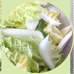 カット野菜イメージ(白菜)